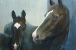 paard_veulen